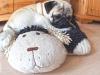 Mops Otiz kuschelt mit seinem Schaf