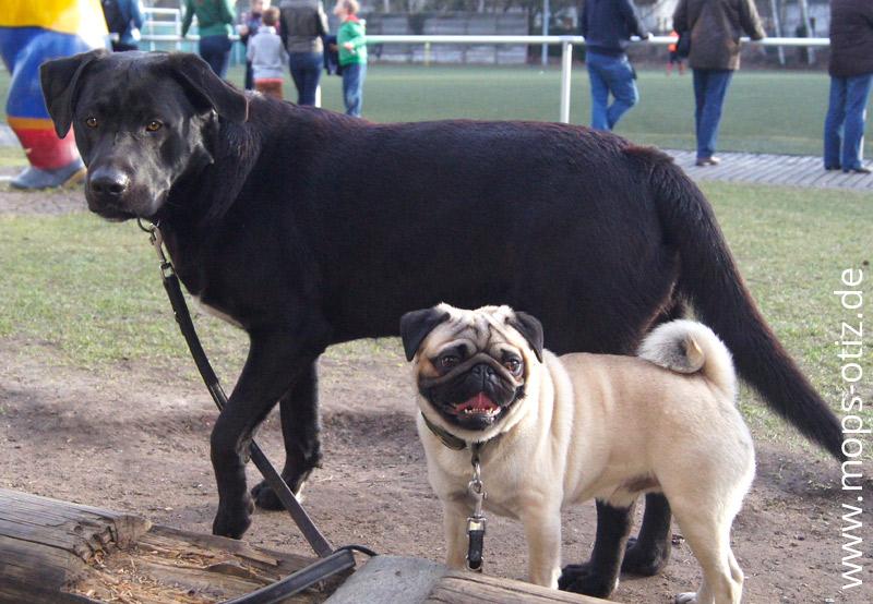 Otiz und Bolle auf dem Sportplatz
